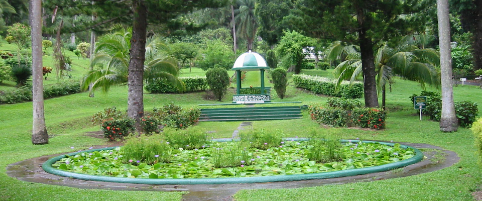 St Vincent Botanical